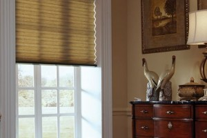 Automated Shades and Blinds Hilton Head